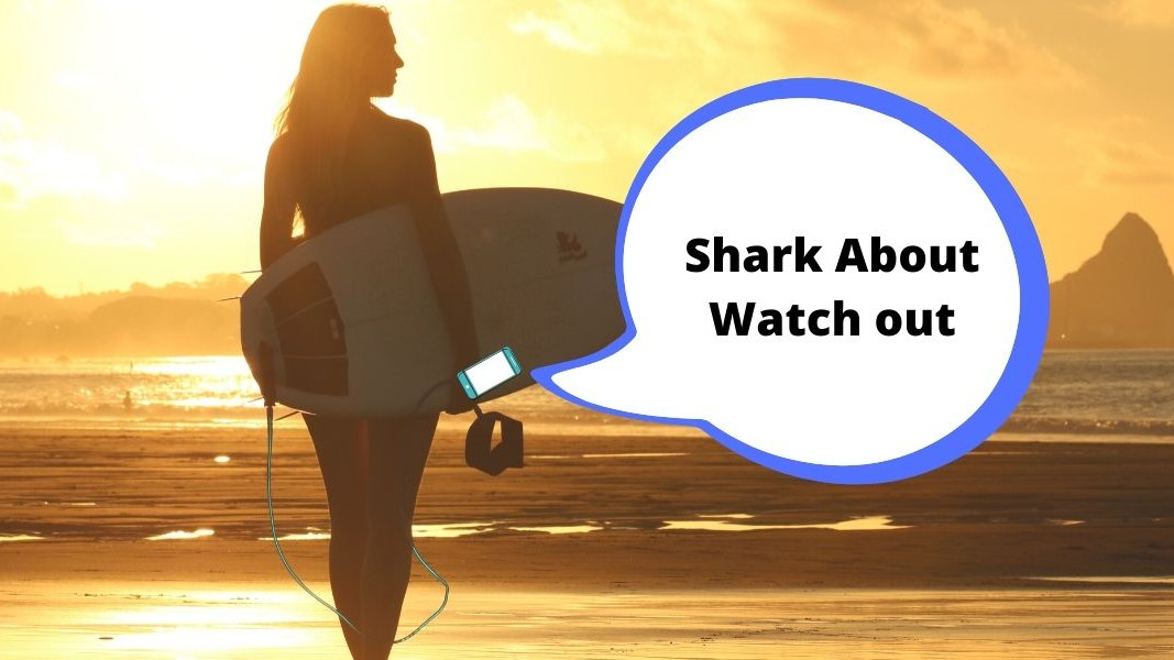 """Victoria's New """"Text Alert"""" System for Beachgoers"""