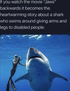 shark meme